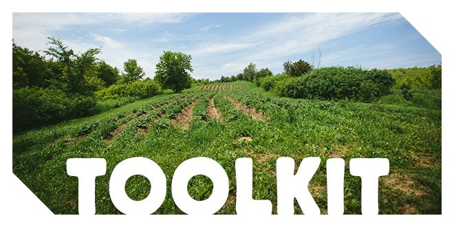 Farm to School Toolkit