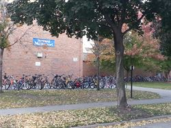seward_full_of_bikes_2.jpg